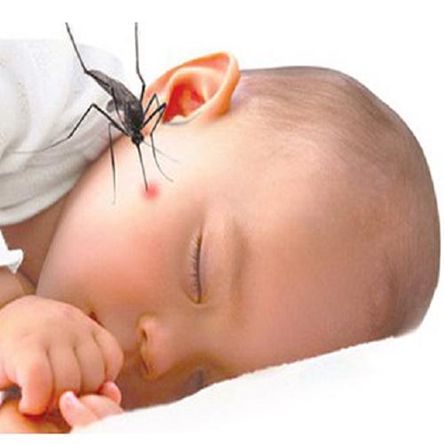 Thuốc Chống Muỗi Hữu Cơ